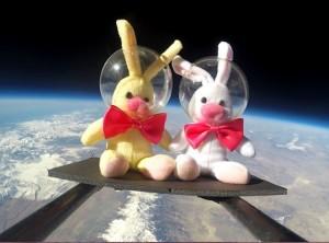 bunny8_strip