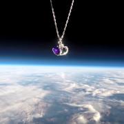 purpleheart2_crop